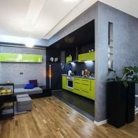 квартира студия дизайн интерьера фото 14