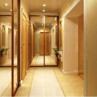 шкаф-купе в коридоре дизайн фото 10