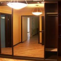 шкаф-купе в коридоре дизайн фото 15