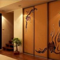 шкаф-купе в коридоре дизайн фото 17