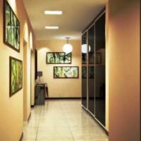 шкаф-купе в коридоре дизайн фото 21