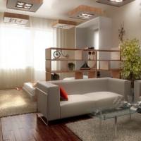 идеи для однокомнатной квартиры фото 11