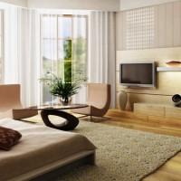 идеи для однокомнатной квартиры фото 20