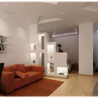 идеи для однокомнатной квартиры фото 21