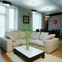 идеи для однокомнатной квартиры фото 22