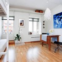 идеи для однокомнатной квартиры фото 24