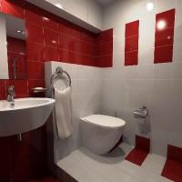 бордовая ванная фото 34