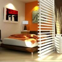 зонирование комнаты на спальню и гостиную фото 18
