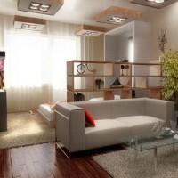 зонирование комнаты на спальню и гостиную фото 19