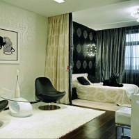зонирование комнаты на спальню и гостиную фото 61