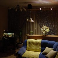 барная стойка в гостиной фото 52