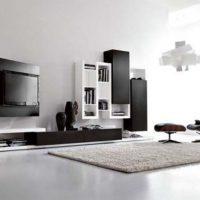 гостиная в черно белом цвете фото 31