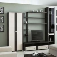 стенка в гостиной модульная в современном стиле фото 20