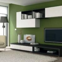 стенка в гостиной модульная в современном стиле фото 6