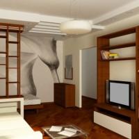 идеи для однокомнатной квартиры фото 12