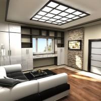 идеи для однокомнатной квартиры фото 14