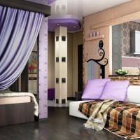 идеи для однокомнатной квартиры фото 16