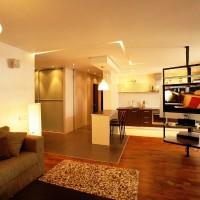 идеи для однокомнатной квартиры фото 25