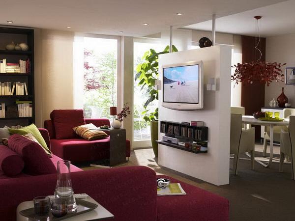 идеи для однокомнатной квартиры фото 3