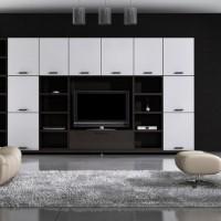 дизайн комнаты в черно белых тонах фото 10