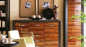мебель цвета венге фото