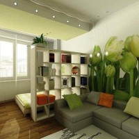 зонирование комнаты на спальню и гостиную фото 49