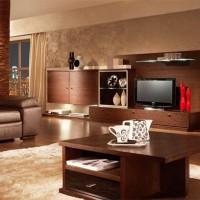 гостиная в стиле модерн фото 51