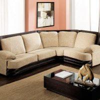 диван в интерьере гостиной фото 10