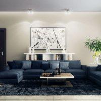 диван в интерьере гостиной фото 27