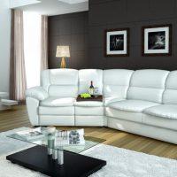 диван в интерьере гостиной фото 53