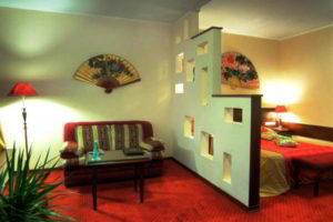 перегородки в комнате для зонирования фото 47